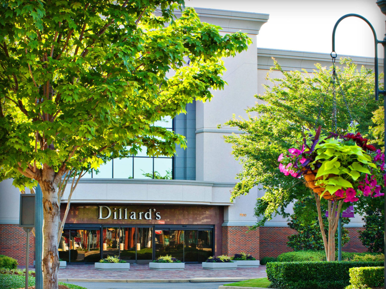 Dillard S The Shoppes At Eastchase Dillard's continues to fulfill the same commitment our. dillard s the shoppes at eastchase